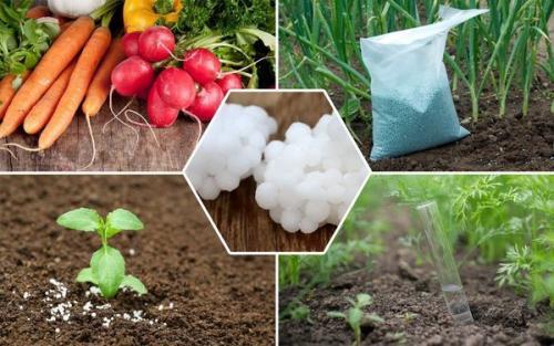 Какие удобрения относятся к азотным удобрениям. Виды азотных удобрений