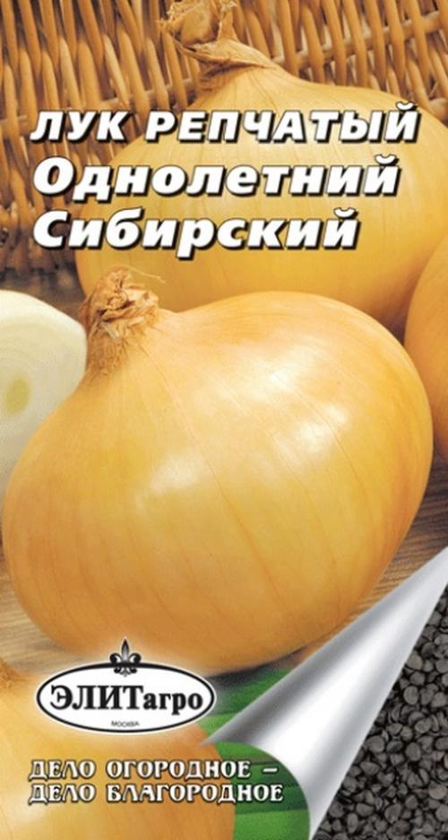 Сибирский однолетний лук. Описание и характеристика сорта