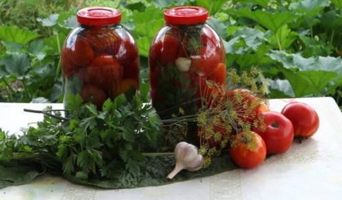Розовые помидоры на зиму рецепты без стерилизации. Вкусные помидоры на зиму, пальчики оближешь — 11 лучших рецептов заготовки помидоров